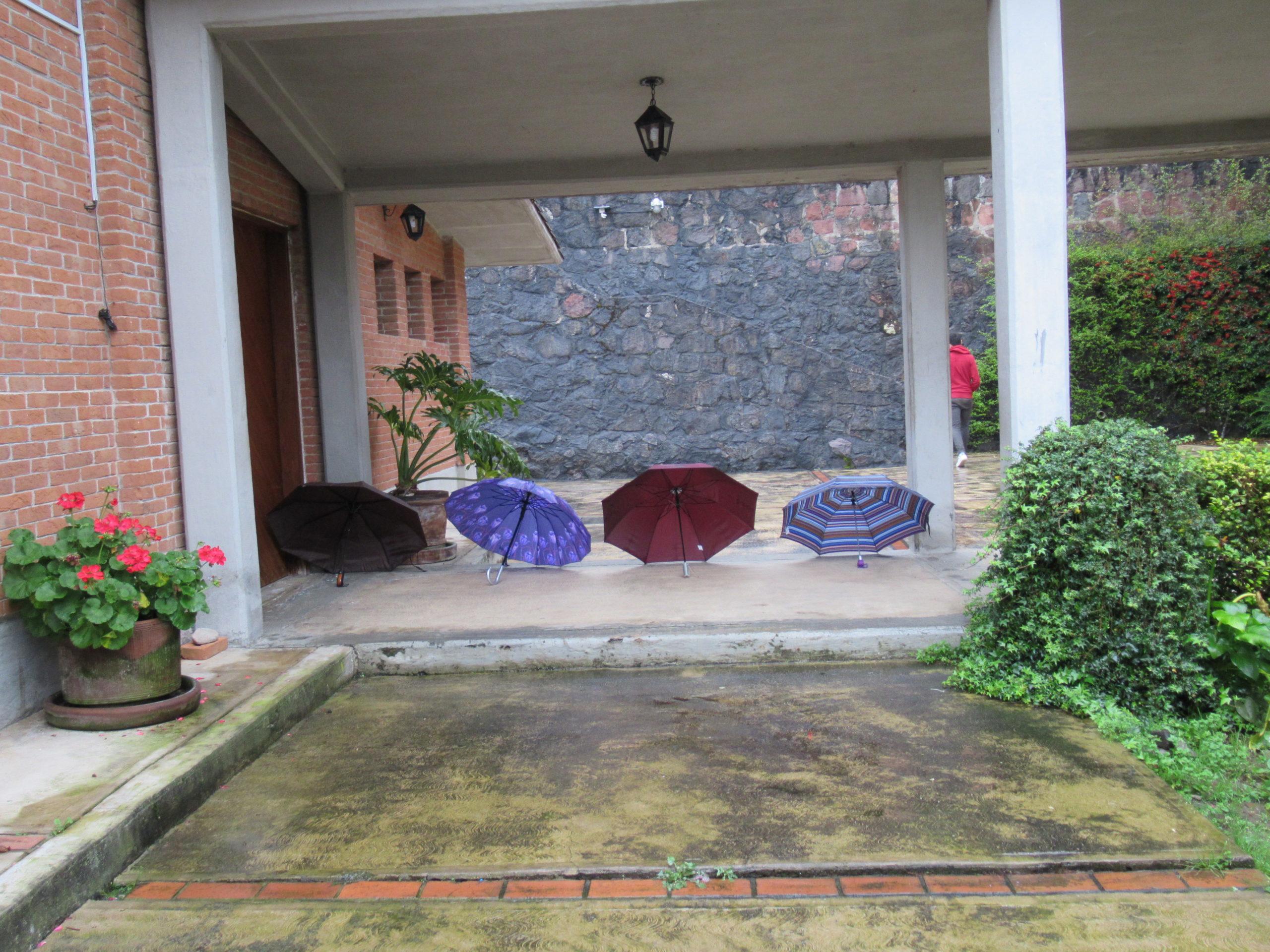 Parapluies mexicains